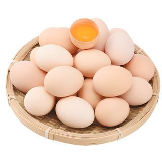 我老家 农家散养土鸡蛋 新鲜柴鸡蛋谷物虫草笨鸡蛋绿壳乌鸡蛋 40枚珍珠棉 珍珠棉发货
