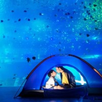 文末抽免单:北京中央广播电视塔下·太平洋海底世界,圆孩子一个梦幻海洋梦
