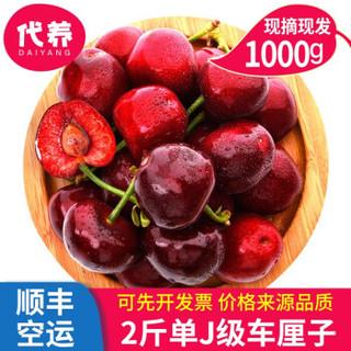 【顺丰空运】国产大樱桃车厘子新鲜水果礼盒车厘子樱桃 【大果装】2斤适合送孩子果径26mm左右