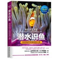 《潜水识鱼:热带海洋生物发现之旅》
