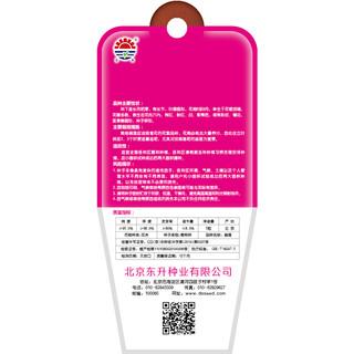 DS 北京东升种业 碗莲花卉种子