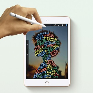 Apple 苹果 iPad mini 5 2019款 7.9英寸 平板电脑(2048*1536dpi、A12、64GB、WLAN版、金色、MUQY2CH/A)