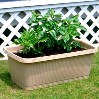 IRIS 爱丽思 阳台种菜盆 塑料长方形 家庭蔬菜种植 植物种植箱 大号花盆