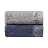 洁玉 DSJ19-12F 毛巾套装 2条装 33*72cm 110g
