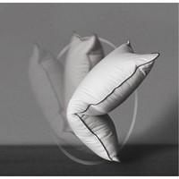 疯狂星期三:SIDANDA 诗丹娜 95%大朵白鹅绒三层回弹枕 48*74cm (21年升级款)