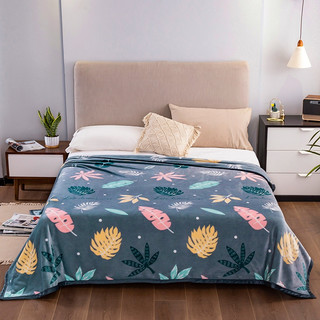YALU 雅鹿 夏季雪貂绒毯子 绒面亲肤柔软保暖午睡电视盖毯1.5m 双人加厚2m绒毯子