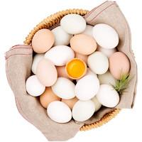 五里源丑鸭 农家土鸡蛋 40枚