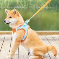 BOUSSAC 狗狗牵引绳 2件套