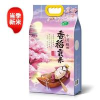PLUS会员:SHI YUE DAO TIAN 十月稻田 香稻贡米 5kg
