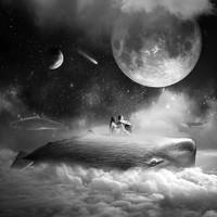 PICA Photo 拾相记 Tomasz Zaczeniuk 作品《梦之海》33 x 33 cm 无酸装裱 限量50版