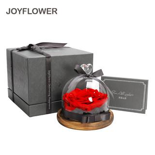 JoyFlower 永生花玫瑰花礼盒玻璃罩七夕情人节礼物 送女生朋友老婆媳妇生日