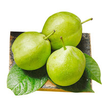 欣娃 陕西大荔早酥梨 净重约8.5-9斤