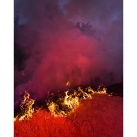 PICA Photo 拾相记 Benoit Paillé 作品《林火 3号》33 x 30 cm 无酸装裱 限量50版