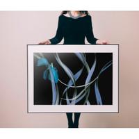 PICA Photo 拾相记 Michel Gantner 作品《郁金香与象脚兰》28 × 33 cm 收藏级影像工艺 无酸装裱 限量50版