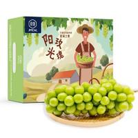 京觅 阳光玫瑰葡萄 净重1.5kg