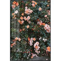 海龙红 法式古玫瑰蔷薇Roses壁画《玫瑰 A款》43x60cm 油画布 典雅黑