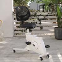 Loctek 乐歌 V2T 人体工学运动椅 优雅白