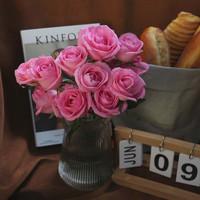 绿植花卉 云客香 玫瑰随机色20枝