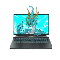 MECHREVO 机械革命 蛟龙7 17.3英寸游戏笔记本电脑(R9-5900HX、32GB、1TB SSD+2TB HDD、RTX3080、100%sRGB、2K)
