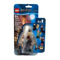 LEGO 乐高 哈利波特系列 40500 魔法世界