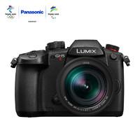 Panasonic 松下 GH5M2 微单无反相机 + ES12060 镜头