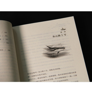 《青铜葵花获奖作品·鲸鱼是楼下的海》