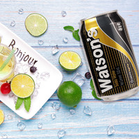无糖苏打水330ml*6罐夏日气泡水鸡尾酒调料饮品饮料