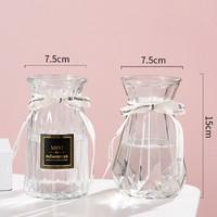 乐之沭 透明玻璃花瓶 2个装