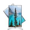 LG 乐金 27UL550 27英寸 IPS FreeSync 显示器 (3840×2160、60Hz、98%sRGB、HDR10)