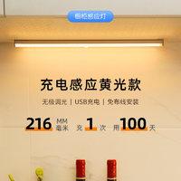 以典 人体感应灯条灯带无线 210mm充电款+暖光
