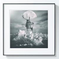PICA Photo 拾相记 Tomasz Zaczeniuk 作品《云鹿》33 x 33 cm 无酸装裱 限量50版