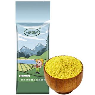 金苗黄小米1kg*2袋