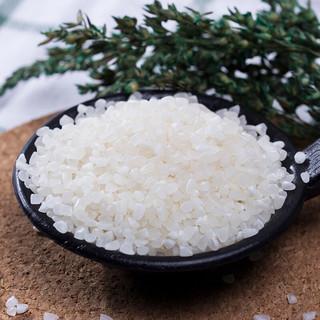 十月稻田 粥米 1kg