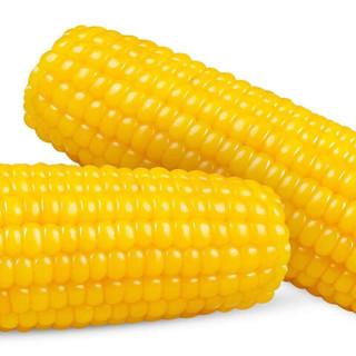 塞星 新鲜黏玉米棒 200g*8根