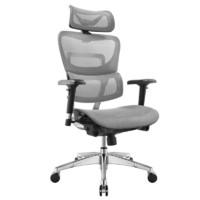 Ergoup 有譜 Fly 人體工學電腦椅