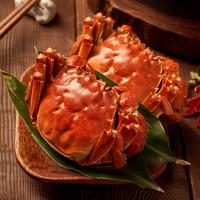 PLUS会员:今锦上 鲜活大闸蟹现货  4对8只 公3.8-4.1两 母2.8-3.1两