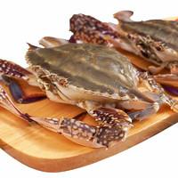 鱻谣 冷冻梭子蟹 7-8只 1.3kg