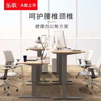 乐歌(Loctek) 多功能电动升降桌简约工作站立办公桌家用学习书桌台式笔记本支架电脑桌子 E1系列 简约白桌腿+白色桌板 桌板尺寸1.2*0.6m