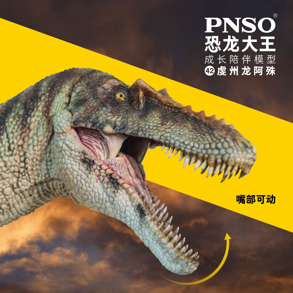 PNSO恐龙大王成长陪伴模型42虔州龙阿殊