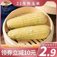 玉米10支2021新鲜真空装包即食肥减餐黏甜糯玉米粒非东北粘玉米棒