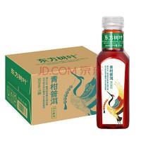 NONGFU SPRING 农夫山泉 东方树叶 茶饮料 500ml*15瓶