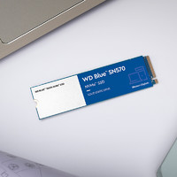 Western Digital 西部数据 Blue SN570 1TB 固态硬盘 M.2接口(NVMe协议)