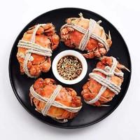 PLUS会员:觅味鲜 鲜活大闸蟹 全母蟹2.6-2.9两8只礼盒装