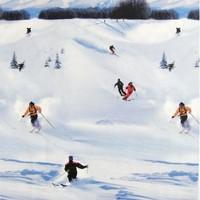 玩转滑雪季!选择丰俭由人!长白山万达度假区8店2晚通兑套餐 含滑雪/温泉/景区权益(4档价格可选)