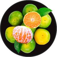 西域美农 湖北蜜桔橘子 大果5斤装 单果65mm+