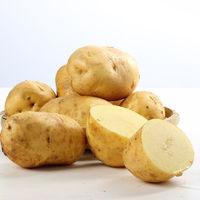 水果蔬菜 黄皮土豆 五斤大果