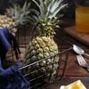 云南蜜香菠萝7斤当季水果包邮 19.9元包邮