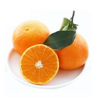 爱媛3 8号果冻橙精品大果5斤装 L0002