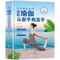 《瑜伽从新手到高手》
