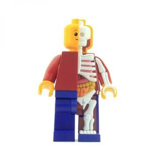 值友专享 : 4D MASTER X JASON FREENY 乐高积木人透视骨骼模型(11寸 超大版)